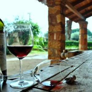 Private tours Wine_Tasting
